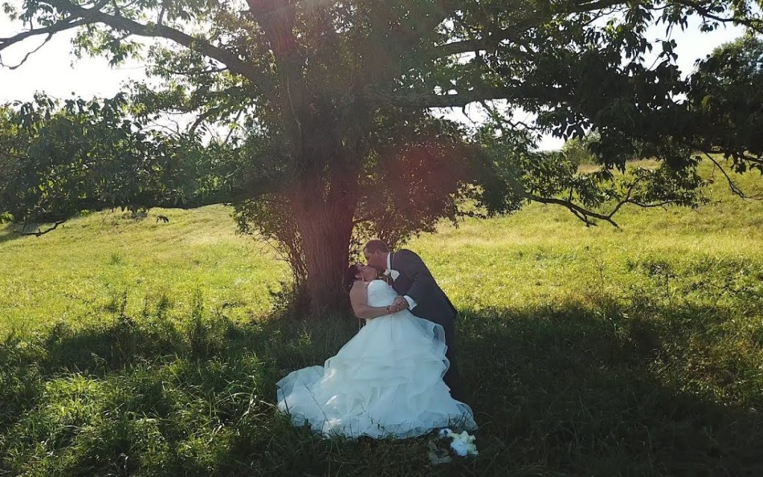 A Labyrinth themed wedding made her dreams come true